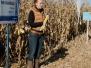 Mezőgazdasági szakmai gyakorlatok iskolánkban
